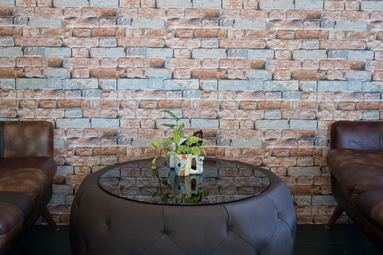 Potted plants on wall at home