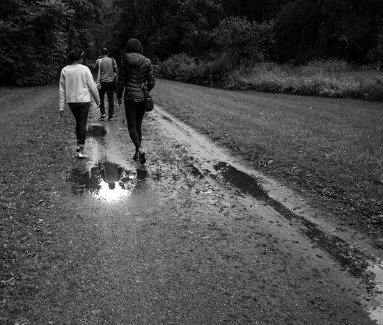 Adult Blackandwhite Day Friendship Full Length Lifestyles Men Monochrome Nature Outdoors People Real People Rear View Road Togetherness Tree Two People Walking Water Wet Women Paint The Town Yellow
