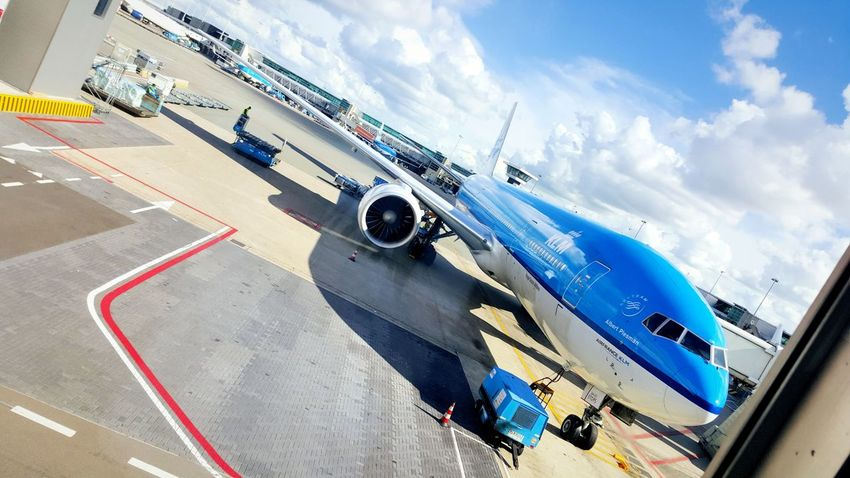 kmf flight Airport Airplane