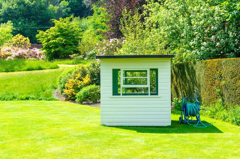 Green lawn outside house