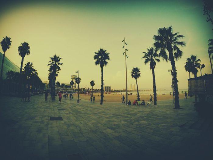 Trip Barcelona Beach Sun