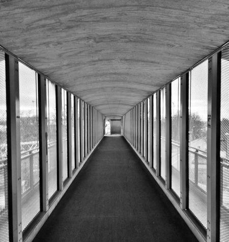 Architecture Perspective Black & White
