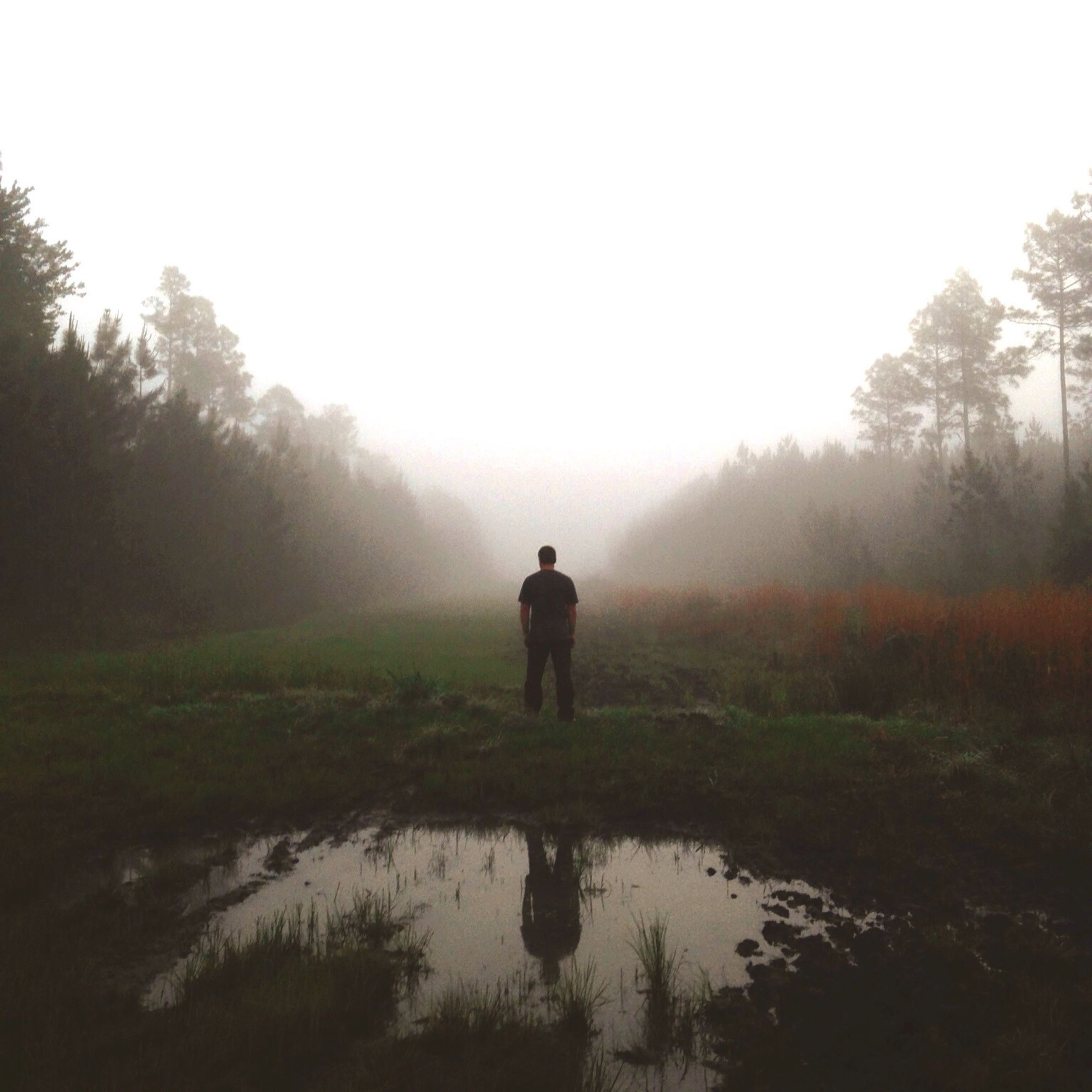 tranquility, tranquil scene, water, fog, tree, reflection, scenics, standing, rear view, beauty in nature, nature, foggy, lake, lifestyles, full length, leisure activity, men