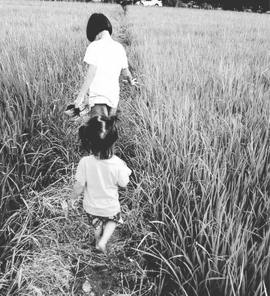 Girls Barefoot Walking Through Rice Field Rice Paddy Cropland Field Nature Farm Together Chidren Kids Agriculture Landscape