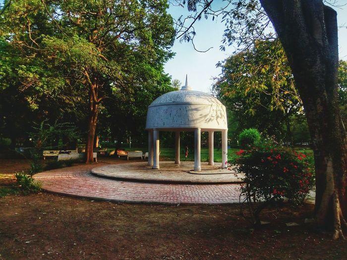 Law Garden Tree Architecture Sky Dome Religion