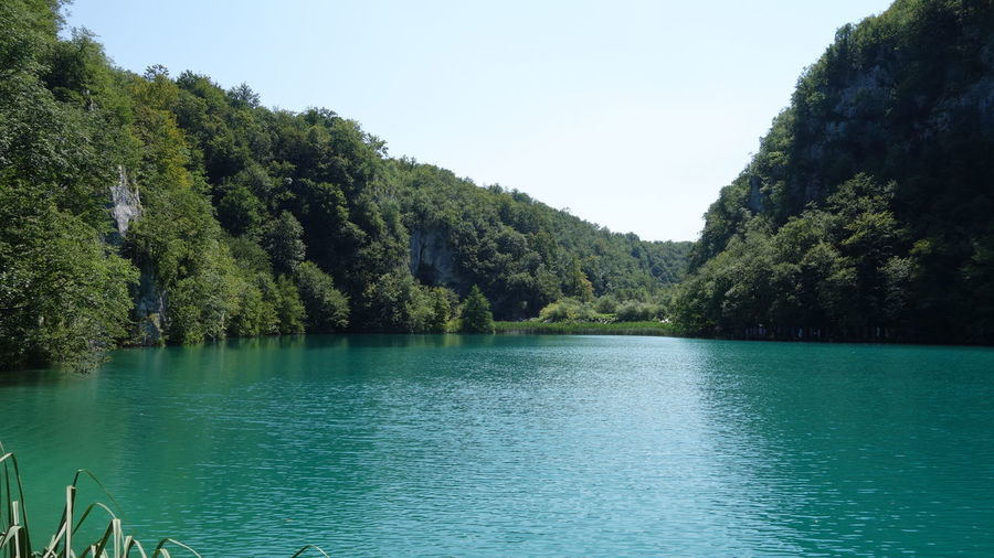 Beautiful Beautiful Nature Beauty In Nature Calm Croatia Croatia ♡ Green Landscape Nature Nature Photography Nature_collection Naturelovers Non Urban Scene Outdoors Plitvice Plitvice National Park Plitvicelakes Remote Taking Photos Taking Pictures Tranquil Scene Unesco UNESCO World Heritage Site Water Water Reflections