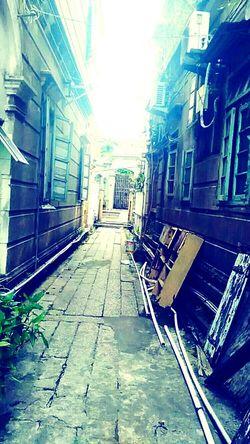 彷徨在悠长悠长又寂寥的小巷,却始终等不到那丁香一样的姑娘 Day