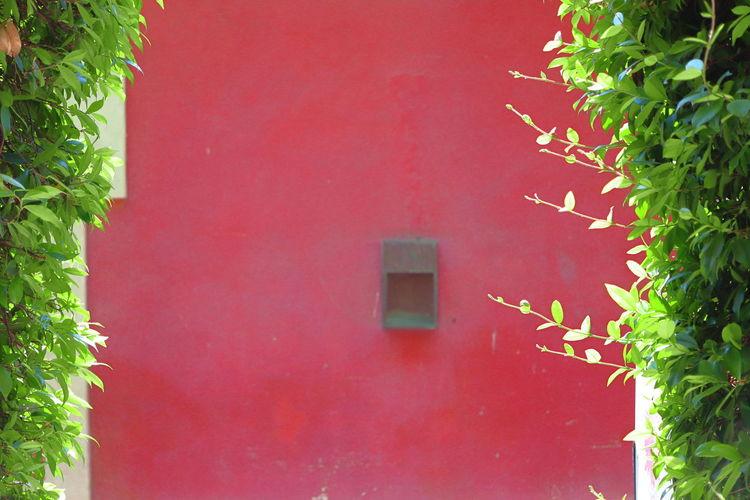 Close-up of red door of building
