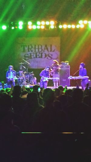 Tribal Seeds at the Marquee Theater, Tempe Arizona January 2014.