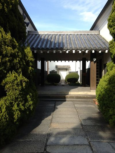 Japan Green Traditional Architecture Architecture Day Tree Building Exterior The Way Forward Roof EyeEmNewHere