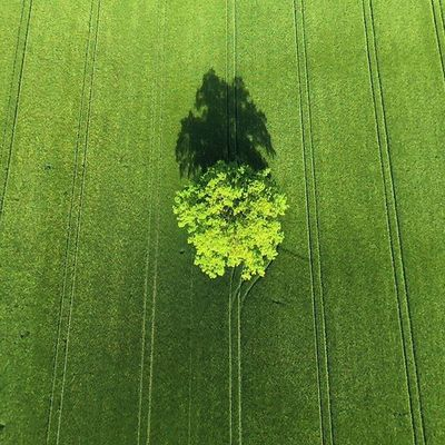 Germany in spring from above. Parrot Bebop2 Quadcopter 🚁 🎮 DEfromAbove Munich München Nofilter