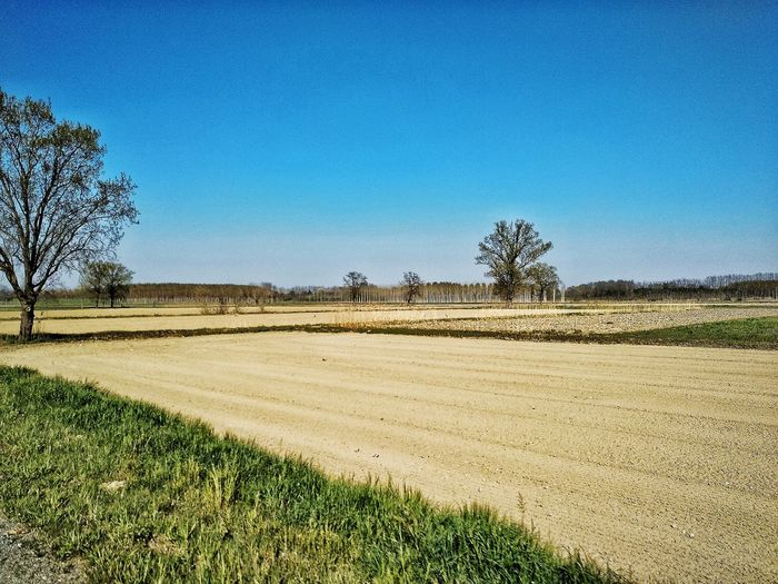 Chignolo Po, Marzo 2019 Hdr_Collection Outdoors Fields Trees Sky Scenics