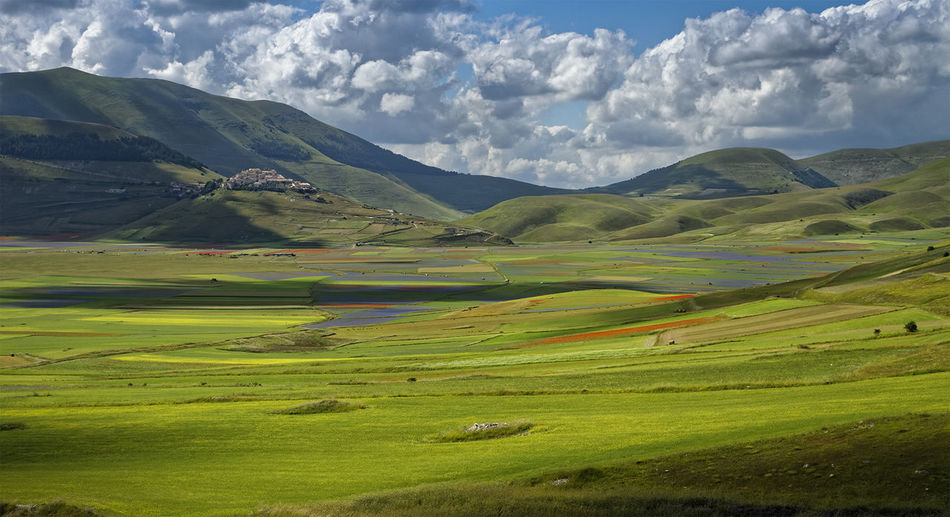Castelluccio Castellucciodinorcia Castelluccionorcia Landscape Landscape_Collection Landscape_photography Landscape #Nature #photography Outdoors Outdoor Photography Outdoors Photograpghy  Traveling Travel Photography EyeEm Nature Lover EyeEm Gallery EyeEm Best Shots EyeEm Best Shots - Nature EyeEm Masterclass EyeEm Best Shots - Landscape Green Nature Photography