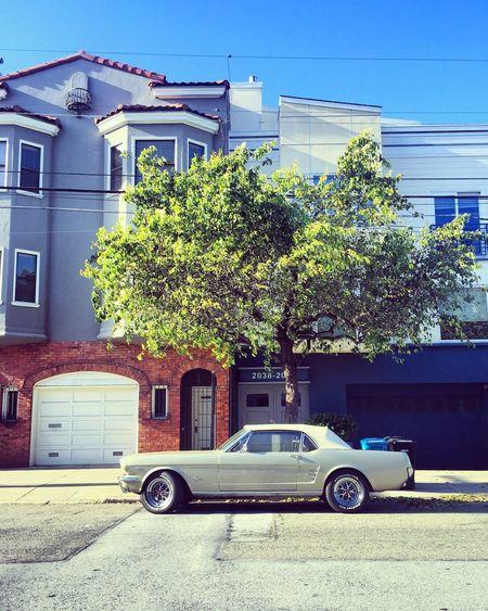 Houses Cars
