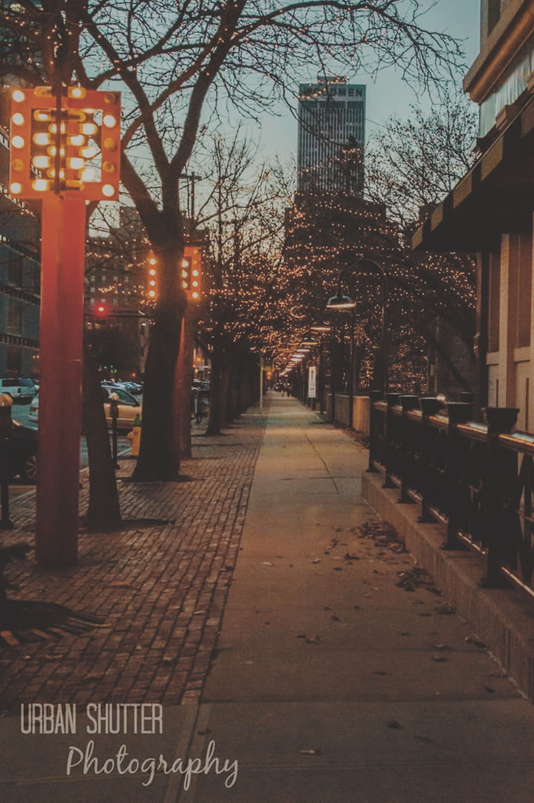 architecture, built structure, building exterior, tree, illuminated, the way forward, city, bare tree, text, outdoors, night, sunlight, street light, no people, lighting equipment, travel destinations, sunset, building, sky, diminishing perspective