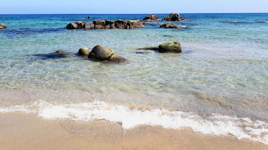 orri beach, sardinia Orri Beach Sardinia Island Blue Turquoise Transparent Summer Sunny Sunbath Suntan Relac Water UnderSea Sea Life Sea Reptile Beach Sand Sky Horizon Over Water Shore Underwater Floating In Water Surf Sandy Beach