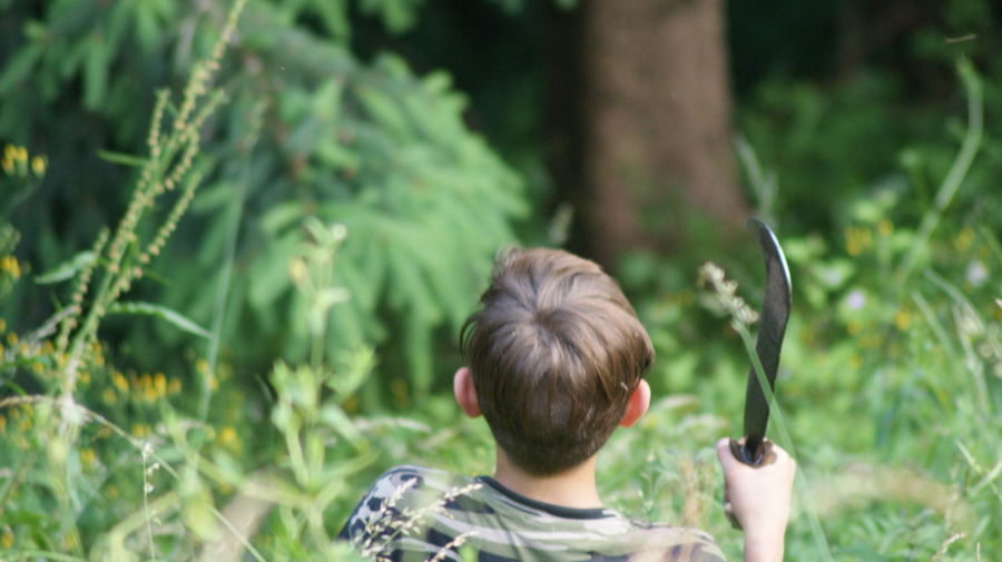 Rear view of boy holding tool in forest