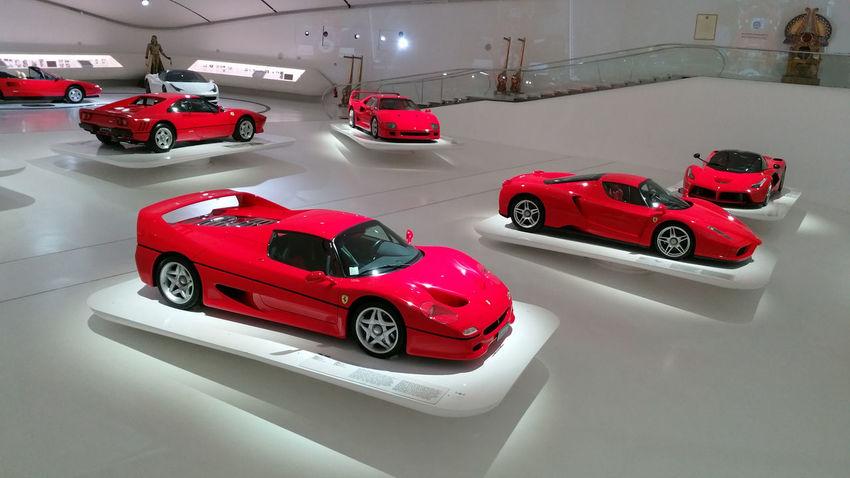 2015  Enzo Enzo Ferrari Ferrari Ferrari Enzo Museum 2015 Museum Red Ferrari W.Feldbusch