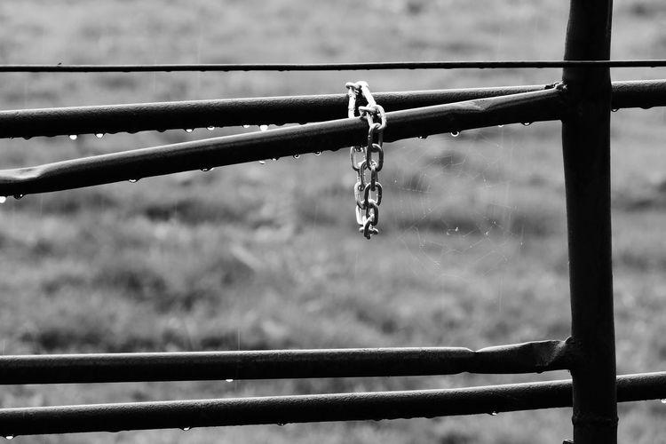 Close-Up Of Metallic Fence In A Rainy Day