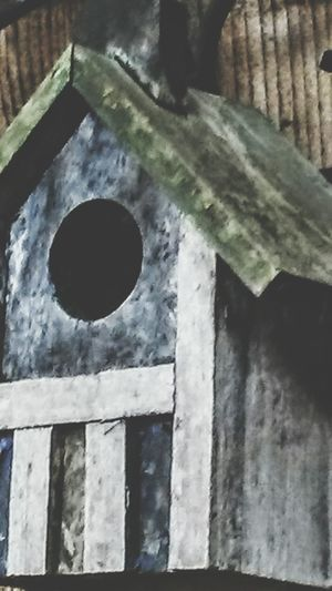 Birdhouse Homesweethome❤ Nesting Place Birdhome Upclose  Welcome Structure And Nature Architecture_collection Handmade Hand Painted Backyardshots Bird House. Tiny House  Home Is Where The Art Is
