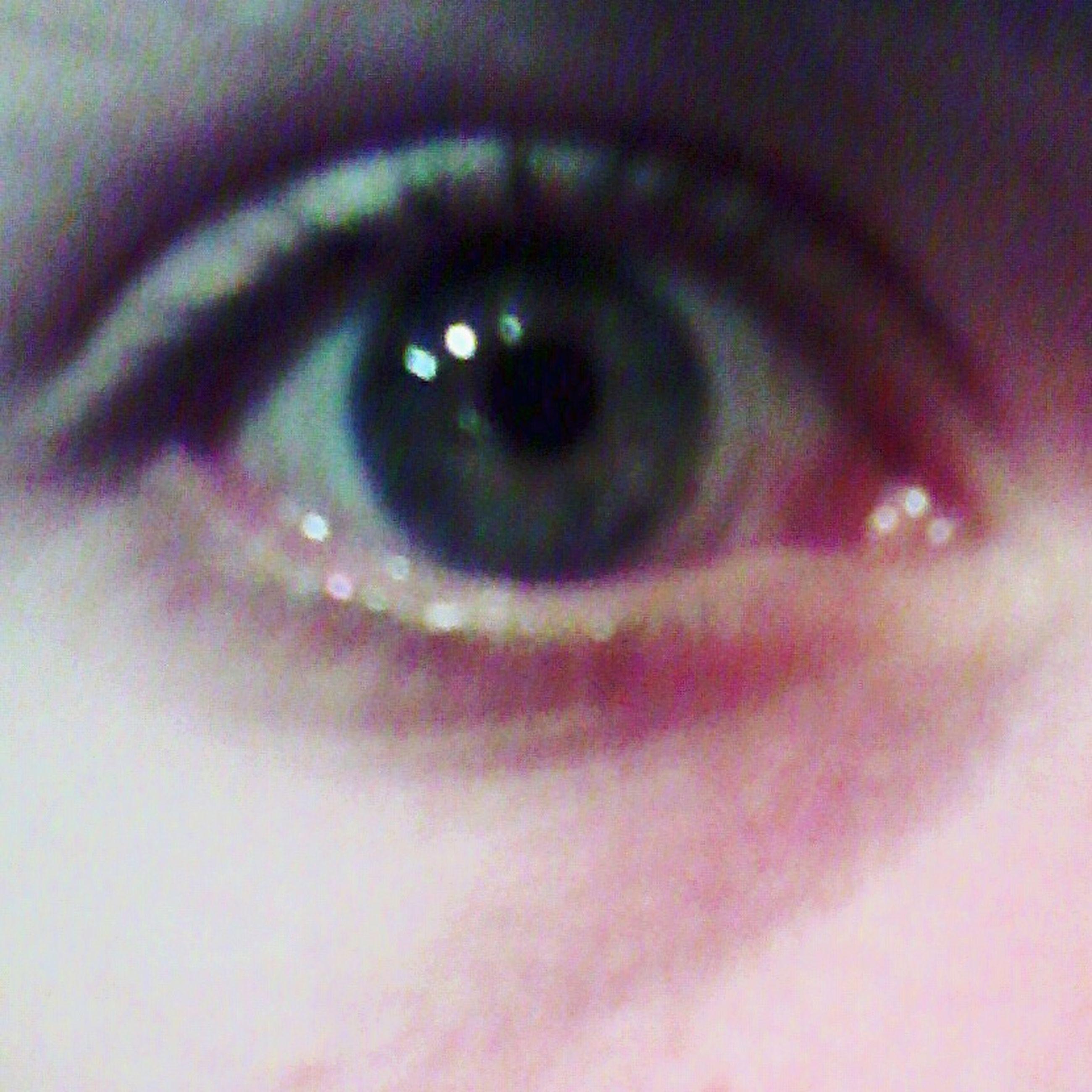 human eye, close-up, eyelash, eyesight, indoors, extreme close-up, part of, sensory perception, extreme close up, full frame, reflection, looking at camera, eyeball, selective focus, portrait, unrecognizable person, backgrounds