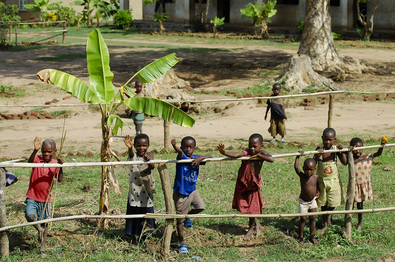 African Children Malawi African Children Boys Child Fence