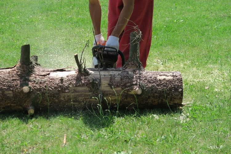 Midsection of man cutting log on lawn