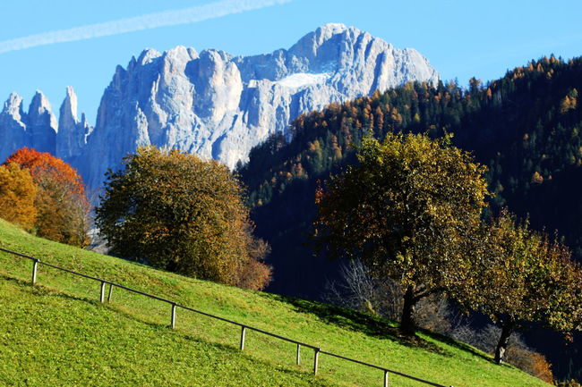 Autumn 2016 Beauty In Nature Blue Sky Day Dolomites Fence Forest Italy Landscape Mountain Nature No People Outdoors Path Rosengarten Scenics Snow Südtirol Trees Vapor Trail