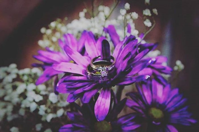 Weddingrings Weddingphotography KandidPhotosByVL