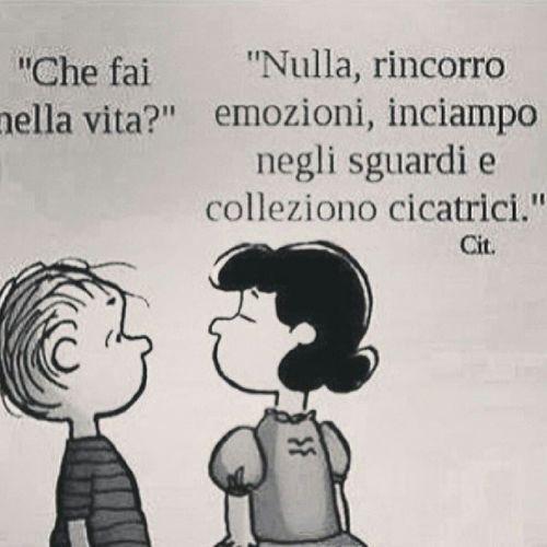 #vita #life #cosahaifattonellavita #whatareudoing #aboutlife #cosa #fai#della#tua#vita Life Vita Tua Cosa Della Fai Cosahaifattonellavita Whatareudoing Aboutlife