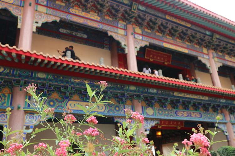 วัดเล่งเน่ยยี่2 Architecture Building Exterior Cultures Travel Destinations Built Structure Religion Travel Flower Outdoors Day Freshness Beauty In Nature EyeEm Flower Thailand_allshots Lengneiyi Chinese Temple