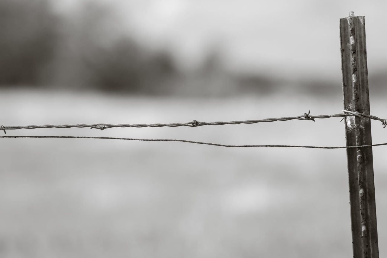 CLOSE-UP OF BARBED WIRE ON FENCE AGAINST BLURRED BACKGROUND