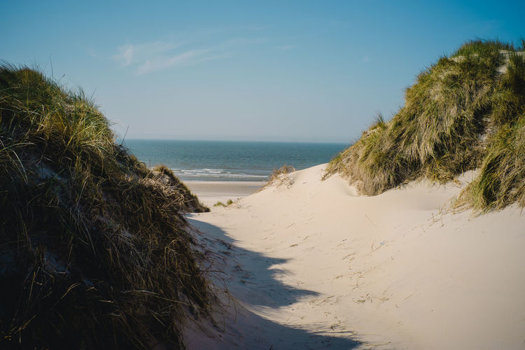 Sea Water Beach Land Sky Horizon Over Water Horizon Beauty In Nature Nature Sand Plant Scenics - Nature Tranquility Tranquil Scene Day Tree Clear Sky No People Grass Outdoors Marram Grass North Sea Dune