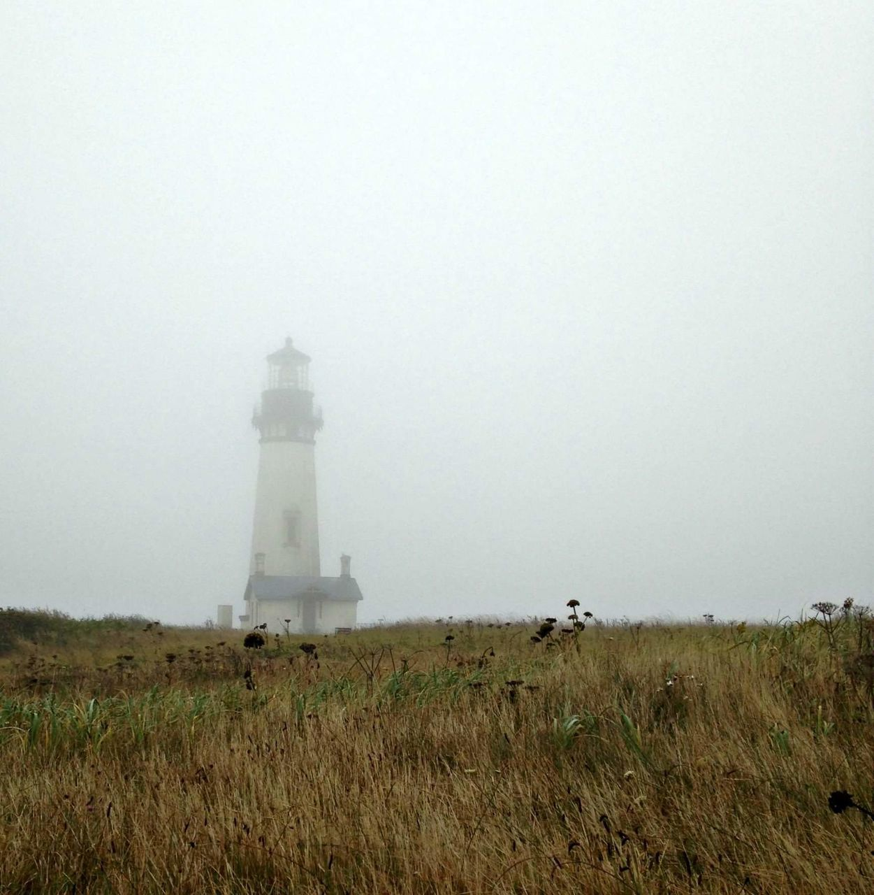 lighthouse, landscape, grass, direction, field, nature, architecture, guidance, outdoors, day, fog, tranquility, no people, beauty in nature, sky