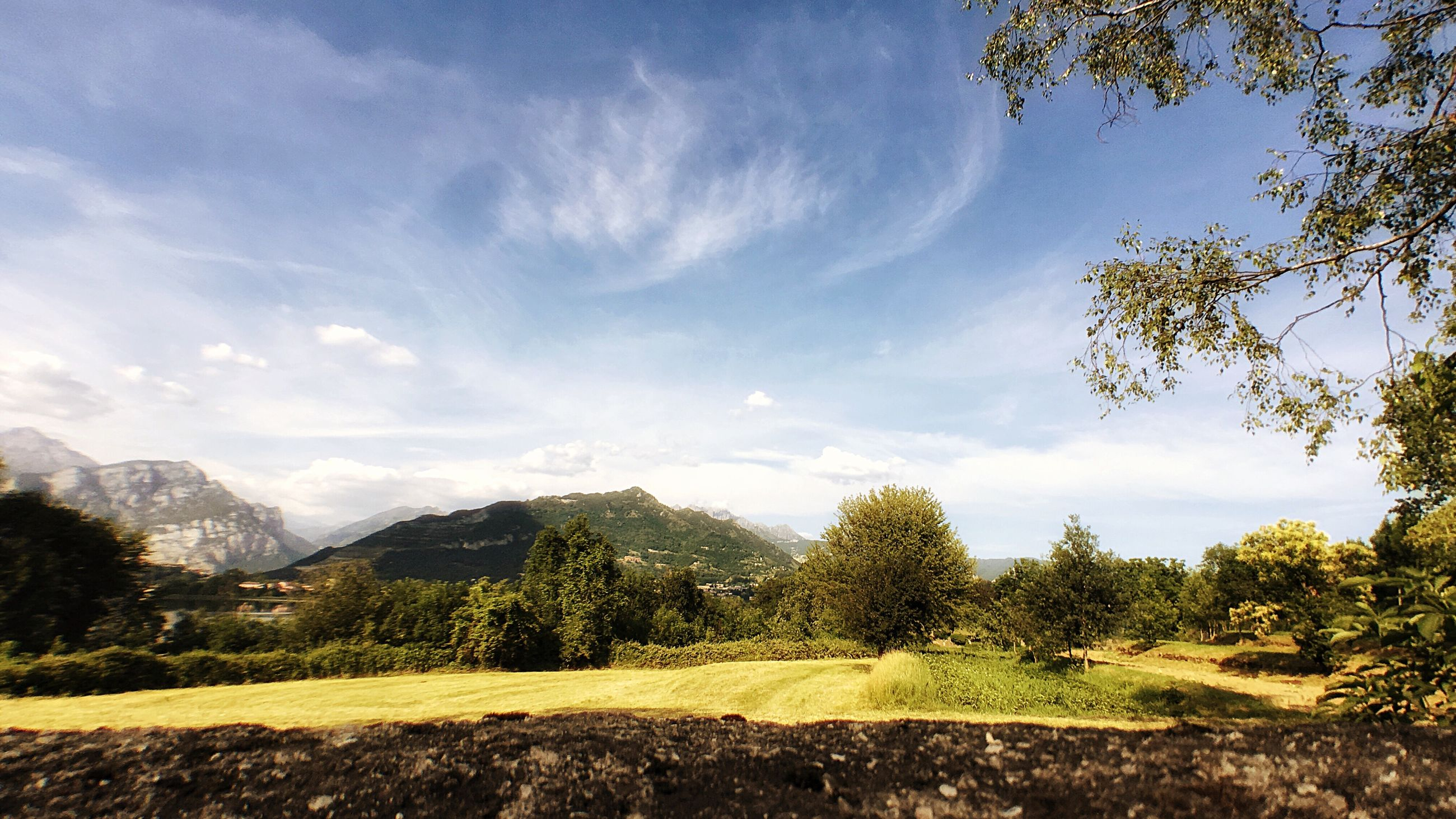 tree, sky, landscape, beauty in nature, nature, scenics, tranquil scene, tranquility, no people, day, mountain, outdoors