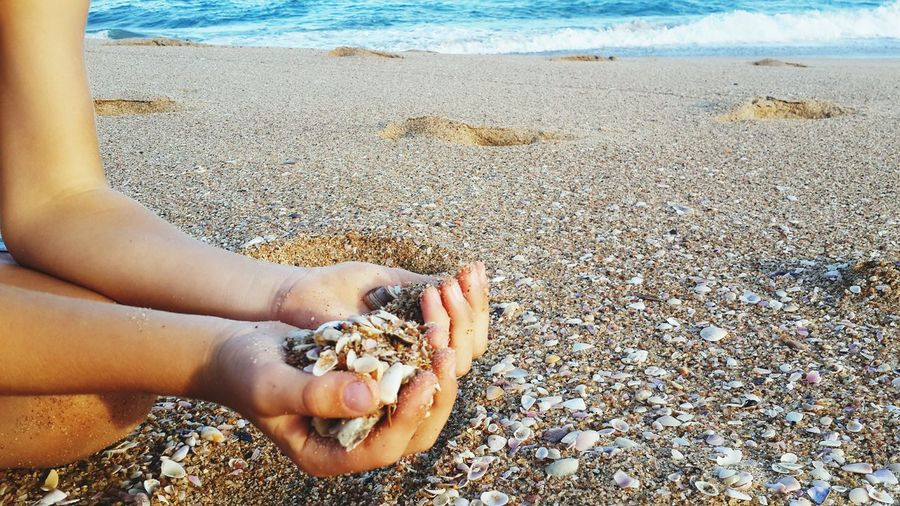 Cropped Image Of Boy Holding Seashell And Sand At Beach