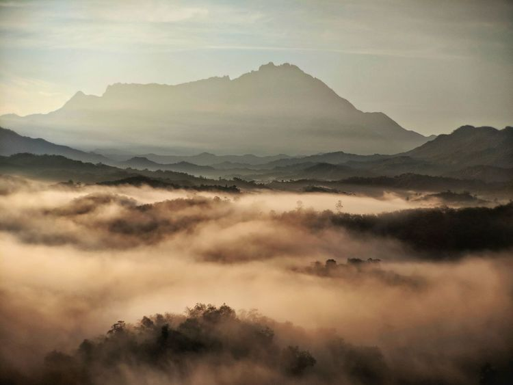 foggy morning glow in Tamparuli with a view of the glorious Mount Kinabalu behind. Kota Kinabalu Malaysia Malaysia Truly Asia Borneo Fog Morning Glow Tree Mountain Fog Sunset Sunlight Pastel Colored Weather Mountain Peak Atmospheric Mood Dramatic Sky