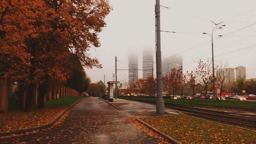 My lovely autimn, my lovely Moscow...