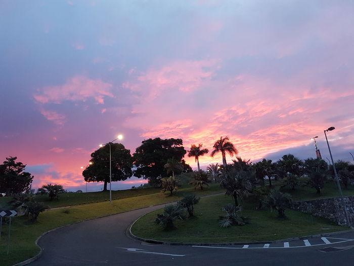 Sunset Nature Beauty Scenics Outdoors Sky Tree No People