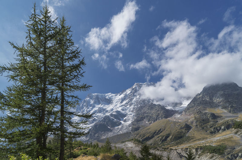 Italy, Monte Rosa Beauty In Nature Cloud - Sky Cold Temperature Day Landscape Monte Rosa Mountain Mountain Peak Mountain Range Nature No People Outdoors Pinaceae Pine Tree Pine Woodland Scenics Sky Snow Tree Winter