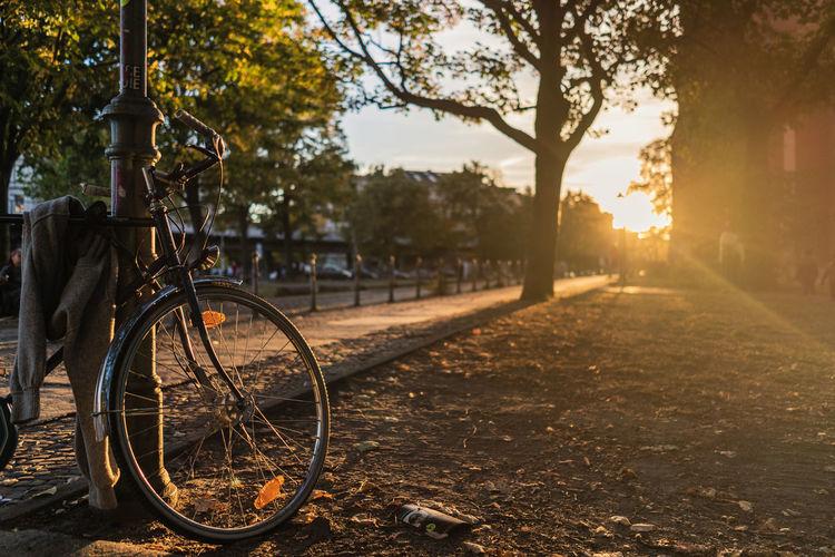 Tree Plant Nature Sunlight Sunset Transportation Bicycle No People Day Mode Of Transportation Land Vehicle Focus On Foreground Sky Lens Flare Land Outdoors Growth Park Field Tree Trunk Wheel Bright Sonnenuntergang Sunset_collection Sunshine Sunset Silhouettes Sunset #sun #clouds #skylovers #sky #nature #beautifulinnature #naturalbeauty #photography #landscape The Street Photographer - 2019 EyeEm Awards