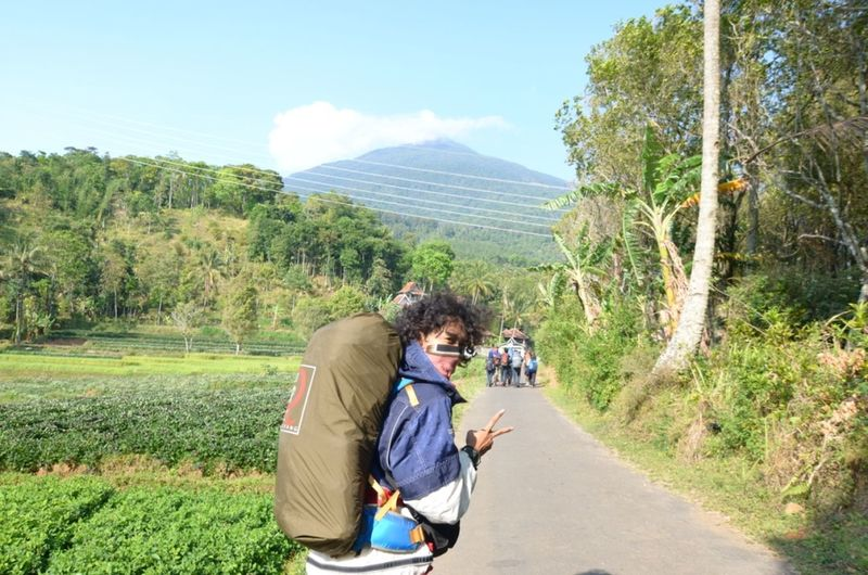 Nature Mountain Hiking Green