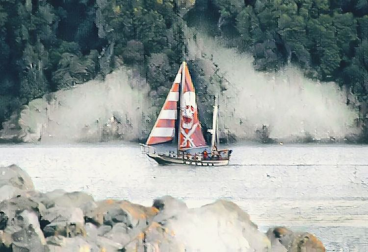 Sailing Boat Angel Island Elephant Strait Tiburon Ca San Francisco Bay Rock - Object Water Day Transportation Outdoors River Nature No People Nautical Vessel