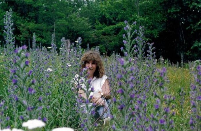 Hanging Out That's Me Enjoying Life Wildflowers Mountain Hiking Grayson Highlands National Park Beauty In Nature