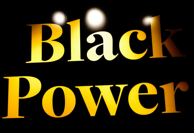 American Democracy MLK Power The Troublemakers Black Civil Disobedience Civil Rights  History Panther Participation
