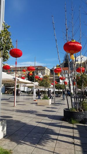 Chinese new year Red City Hanging Beach Shadow Sky Chinese Lantern Chinese Culture Chinese Lantern Festival New Year Paper Lantern Decoration Chinese New Year