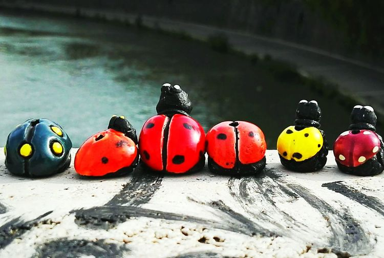 In A Row Multi Colored Day Outdoors Beach No People Nature Water Close-up Ladybird Ladybirds 🐞 Ladybug Ladybirds Team Family Family Time Riverside Riverside Wildlife Statue Manmade