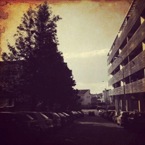 Home...Pracadobomnome Vintique Igersportugal Ruasdeportugal