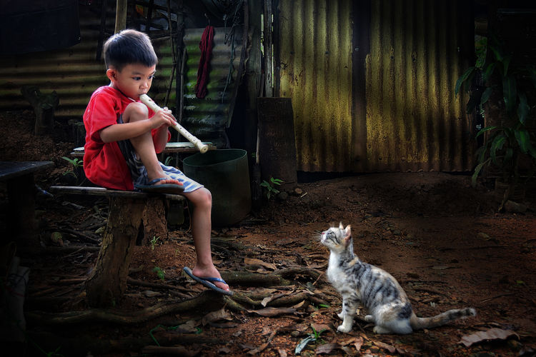 Boy playing flute with cat at yard