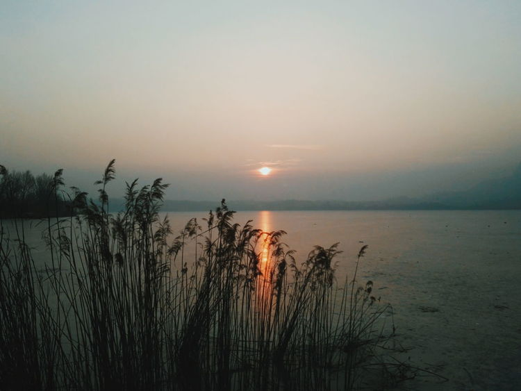 Sunset Nature Beauty In Nature Water Tranquility Horizon Over Water Silhouette No People Scenics Wetland Grass Landscape Tourism Nature Skylover Shadows And Sunlight Reflection